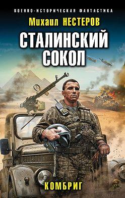 Михаил Нестеров - Сталинский сокол. Комбриг