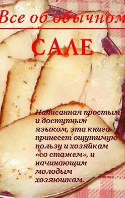 Иван Дубровин - Все об обычном сале