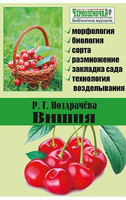 Р. Ноздрачева - Вишня
