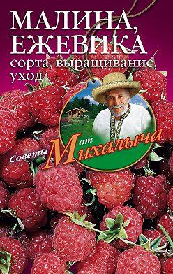 Николай Звонарев - Малина, ежевика. Сорта, выращивание, уход