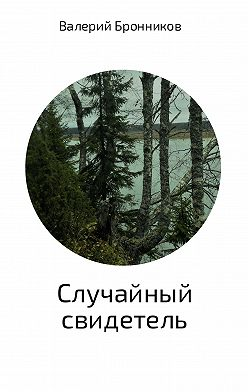 Валерий Бронников - Случайный свидетель