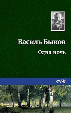 Василий Быков - Одна ночь