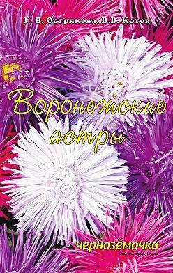 В. Котов - Воронежские астры