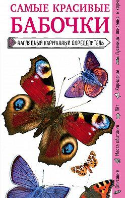 Ксения Митителло - Бабочки. Наглядный карманный определитель