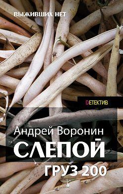 Андрей Воронин - Слепой. Груз 200