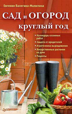 Евгения Валягина-Малютина - Сад и огород круглый год