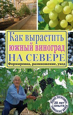 Юрий Загвоздин - Как вырастить южный виноград на севере