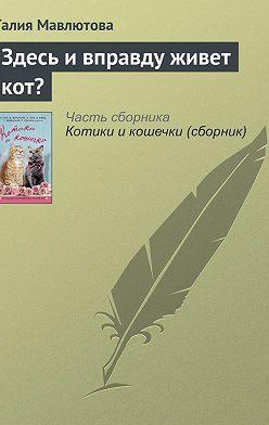 Галия Мавлютова - Здесь и вправду живет кот?