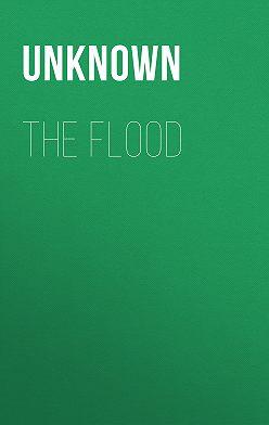 Unknown Unknown - The Flood