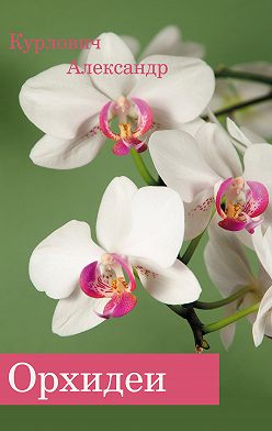 Александр Курлович - Орхидеи