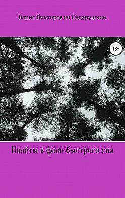Борис Сударушкин - Полёты в фазе быстрого сна