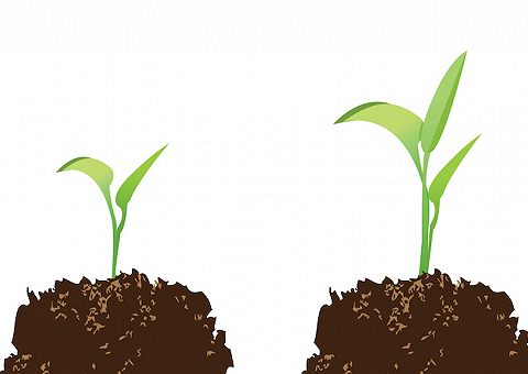 Лучшие книги по саморазвитию и личностному росту