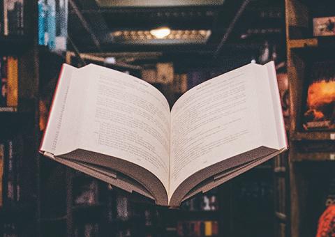 По ту сторону обложки: самые интересные факты о книгах