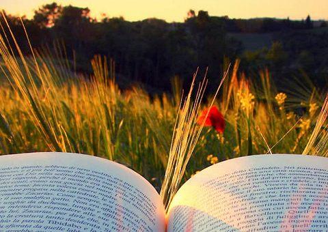 Произведения русской классической литературы, которые стоит перечитать