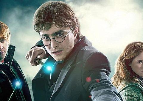 Гарри Поттер дома