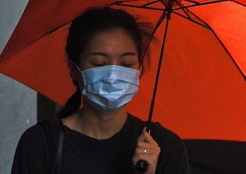 От микроба до вируса: книги об эпидемиях
