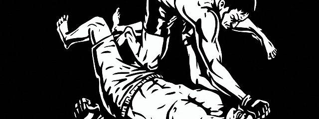Крав-мага. Система израильского рукопашного боя