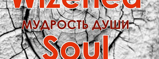 Мудрость души. Wizened soul