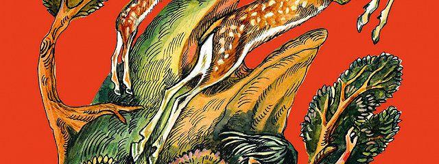 Сын оленя. Абхазские народные сказки
