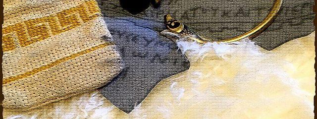 Навклер Виал 1: Пути и стены