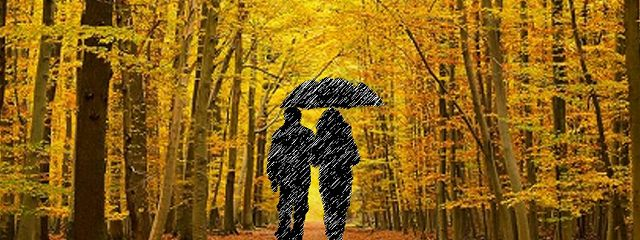 Поздняя осень любви