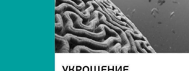 Джон Арден: Укрощение амигдалы и другие инструменты тренировки мозга. Саммари