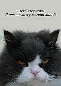 Олег Северюхин -Я вас поглажу мягкой лапой