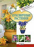 Татьяна Дорошенко -Луковичные растения