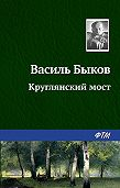 Василий Владимирович Быков -Круглянский мост