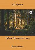 Иван Бутаков -Тайны Чудесного леса. Пушистый ёж