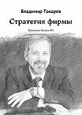 Владимир Токарев -Стратегия фирмы. Практикум: Выпуск№1