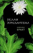 Мэри Брахт -Белая хризантема