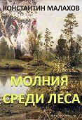 Константин Малахов - Молния среди леса