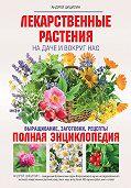 Андрей Николаевич Цицилин - Лекарственные растения на даче и вокруг нас. Полная энциклопедия