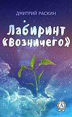 Дмитрий Раскин -Лабиринт «Возничего»