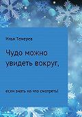 Илья Темерев -Чудо можно увидеть вокруг, если знать на что смотреть!