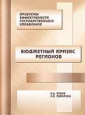 В. А. Ильин, А. И. Поварова - Проблемы эффективности государственного управления. Бюджетный кризис регионов