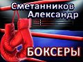 Александр Сметанников -«Боксёры»