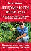 Виктор Жвакин - Плодовые кусты вашего сада