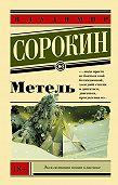 Владимир Сорокин -Метель