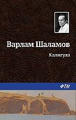 Варлам Шаламов - Калигула