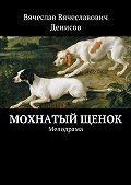 Вячеслав Денисов -Мохнатый щенок. Мелодрама