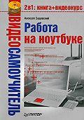 Алексей Садовский -Работа на ноутбуке