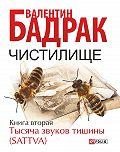 Валентин Бадрак -Чистилище. Книга 2. Тысяча звуков тишины (Sattva)
