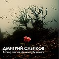 Дмитрий Слепков -Я отдам кусочек сердца,чтобы ты дышала…