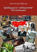 Александр Забусов -Бредущий в «лабиринте». Книга 2. Чистильщик