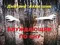 Дмитрий Ахметшин -Блуждающие по сну