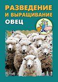 Илья Мельников -Разведение и выращивание овец