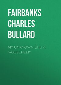 "Charles Fairbanks -My Unknown Chum: ""Aguecheek"""