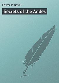 James Foster -Secrets of the Andes